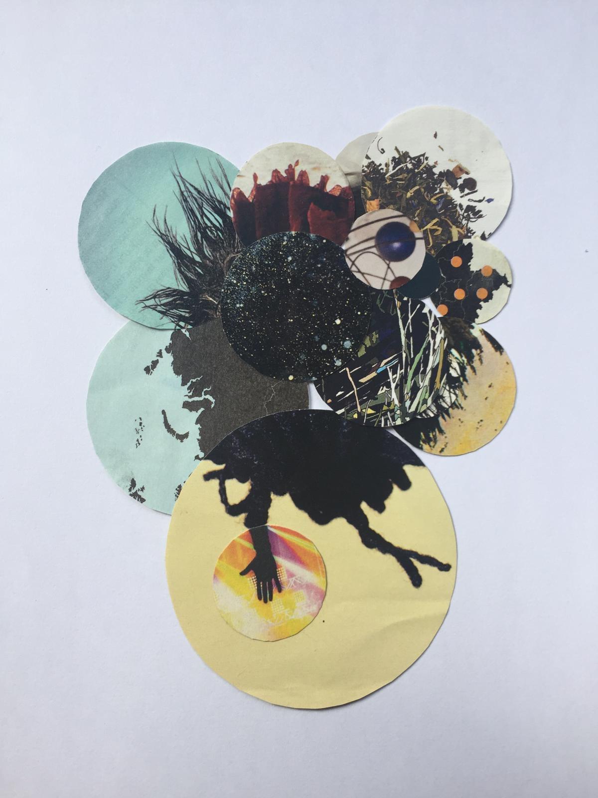 vogelcollage van Hanneke Adelaar